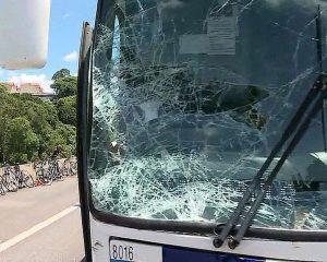 Triplica o número de mortes de ciclistas no 1º trimestre de 2019 em São Paulo, diz Infosiga